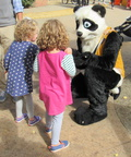 Panda easily attracts children!
