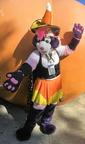 Candy Coon; photo by Penh