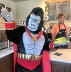 Ultra-Gor inside Peet's Coffee, where they have bananas for visiting gorillas!