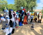 Further Confusion 2019 Picnic!
